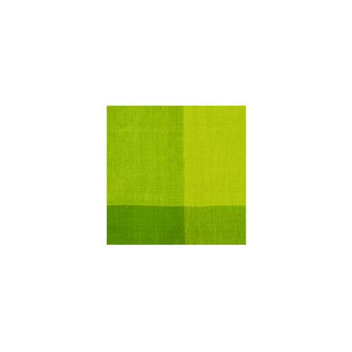 50589 チェックマルチカバー グリーン