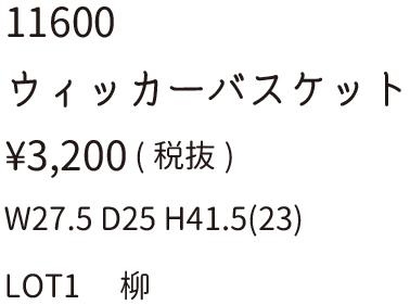 11600文字