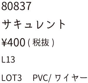 80837サキュレント