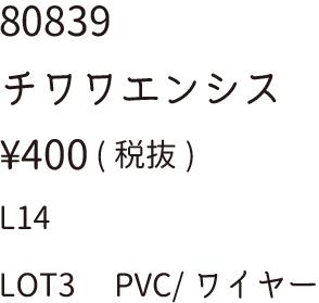 80839チワワエンシス